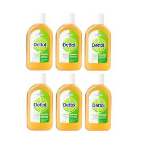 6 x Dettol Antibacterial Disinfectant Liquid Solution 250ml